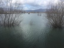 flooded-areas-shkoder-albania-march-2018